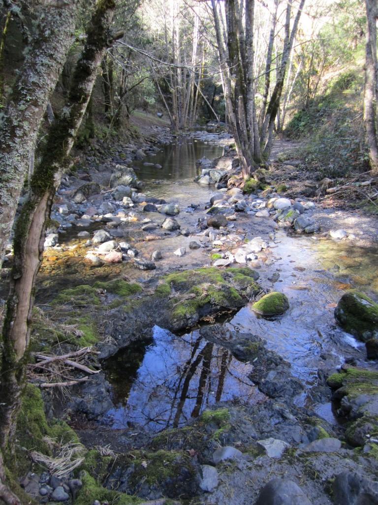 Headwaters in Winter, Santa Rosa Creek