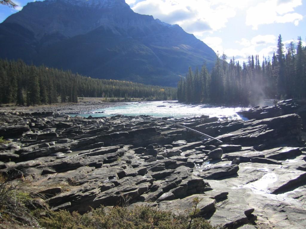 Athabasca River, Jasper National Park, Alberta.