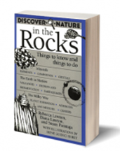 Book Cover: Discover Nature in the Rocks: Things to Know and Things to Do