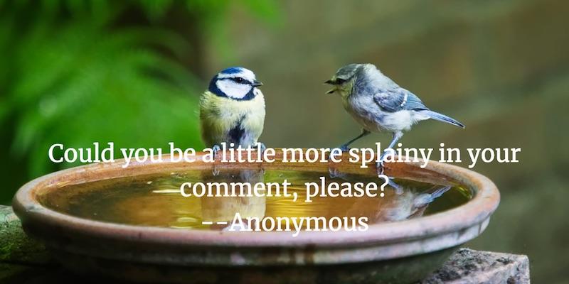 Birdsplaining